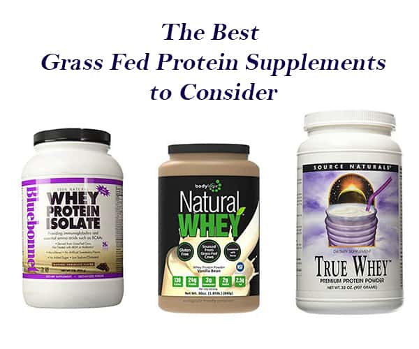 The Best Grass Fed Protein Supplements to Consider