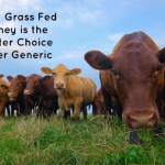 Why Grass Fed Whey is the Better Choice Over Generic