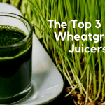 When You Love Your Wheatgrass: The Top 3 Best Wheatgrass Juicers