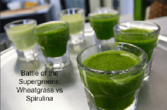 Battle of the Supergreens: Wheatgrass vs Spirulina [2019 Update]