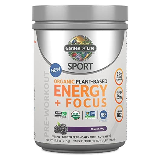 Garden of Life Energy and Focus Review That You'll Love