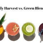Daily Harvest vs Green Blender: Battle Of The Smoothie Subcriptions