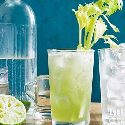 celery tonic