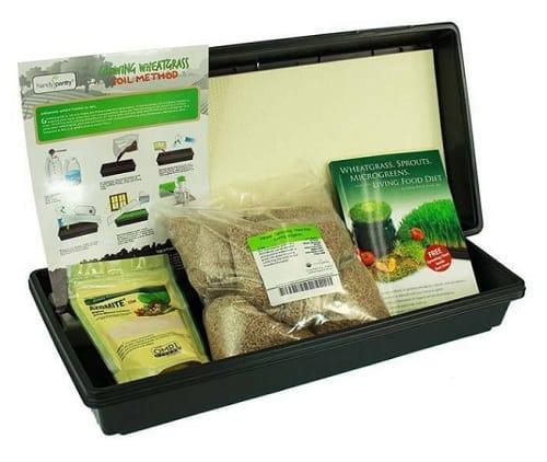 living whole foods hydroponic organic wheatgrass