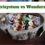 Nutrisystem vs Wonderslim – Which One is Right for You?