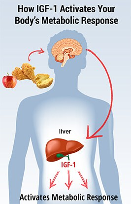 Take the Metabolic Factor Quiz