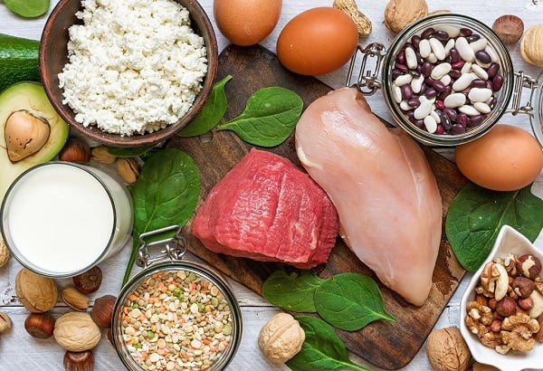 High PRotein Food Fat Above Knees