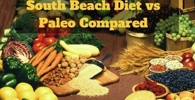 South Beach Diet vs Paleo Compared